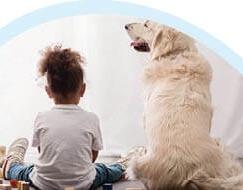 האם ילדים שחיים לצד חיות מחמד חסינים יותר בפני אלרגיות? מחקר חדש חושף כי גידול חיות מחמד מגיל קטן יכול להקטין את הסיכוי לפתח מחלות אלרגיה שונות ובעיקר את מחלת האסטמה. פרופ' אילן דלאל, מומחה ברפואת ילדים, אימונולוגיה ואלרגולוגיה במכבי שירותי בריאות, מסביר את ההיגיון שמאחורי ממצאי המחקר וממליץ לנו להפסיק להיות סטריליים כל כך בשנים האחרונות נצפתה מגמת עלייה דרסטית בשכיחותן של אלרגיות בקרב ילדים לרבות אסטמה. מחקר חדש חושף נתון מעניין על ידידו הטוב של האדם וגם על הבן הדוד הרחוק שלו. המחקר מראה שגידול ילדים בסביבת כלבים או חתולים מגן עליהם מפני מחלת האסטמה. ובמספרים מדויקים יותר כאשר ניסו לכמת כמה שווה כל כלב או כל חתול באחוזים להורדת סיכוי הנכונות לפתח אלרגיה, נמצא שכל כלב או חתול שנכניס הביתה יקטין את הסיכוי של הילד לסבול ממחלה אלרגית בעשרים אחוז לפחות. לפי נתון זה, ניתן היה לחשוב כי הכנסת חמישה כלבים וחתולים הביתה תביא את סיכויי החסינות לאלרגיה לכדי רמה של מאה אחוזים. כמובן שזה נשמע יפה באופן תאורטי, אך במציאות זה לא אפשרי. במחקרים תומכים למחקר זה נמצא כי ילדים שגרים בחוות, נוטים לפתח פחות אלרגיות מאשר ילדים שגרים בעיר, היות והם נחשפים ליותר בעלי חיים בתדירות קבועה. מחקר נוסף הראה כי אנשים ממדינות עולם שלישי או ממדינות פחות מפותחות שגדלו בסביבה